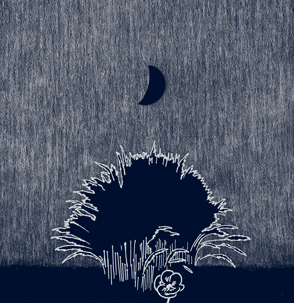 Sketch of moon with vegetation